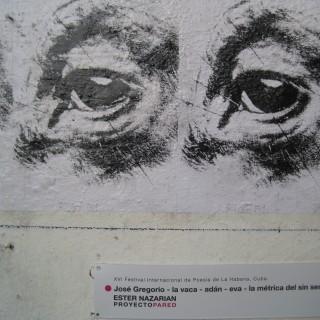 PROYECTOPAREDCUBA-FOTOS